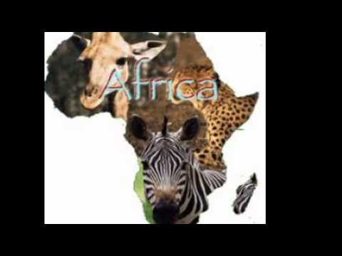 mai charamba - africa restore identity