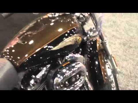 Harley-davidson 1200 custom 110th anniversary image #5.