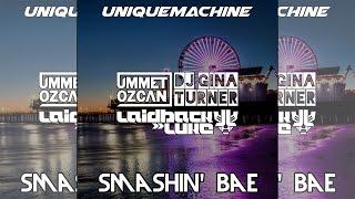 Smashin Bae Ummet Ozcan Laidback Luke DJ Gina Turner Unique Machine Mashup