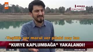Kaplumbağa Uyuşturucu Taşırken Yakalandı - Röportaj Adam