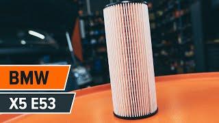 Cum se înlocuiește filtru ulei si ulei motor pe BMW X5 (E53) [TUTORIAL AUTODOC]