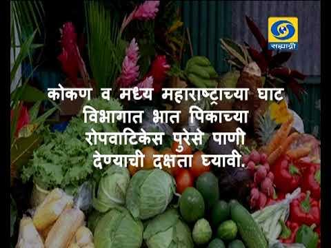 Krishivarta Bajarbhav - 14 June 2018 - कृषीवार्ता बाजारभाव