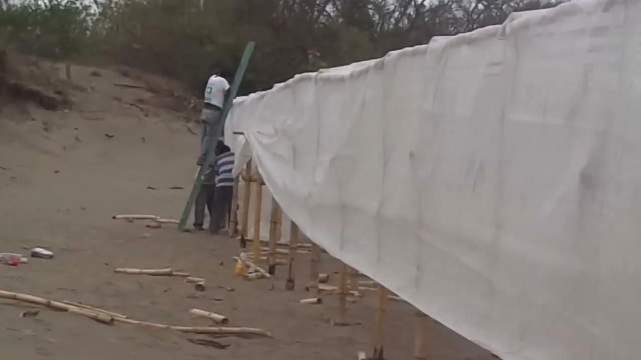 Construcci n de un invernadero con malla antiafido con for Construccion de casas paso a paso