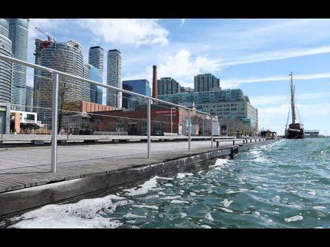 Toronto Harbour swimming in E. coli bacteria