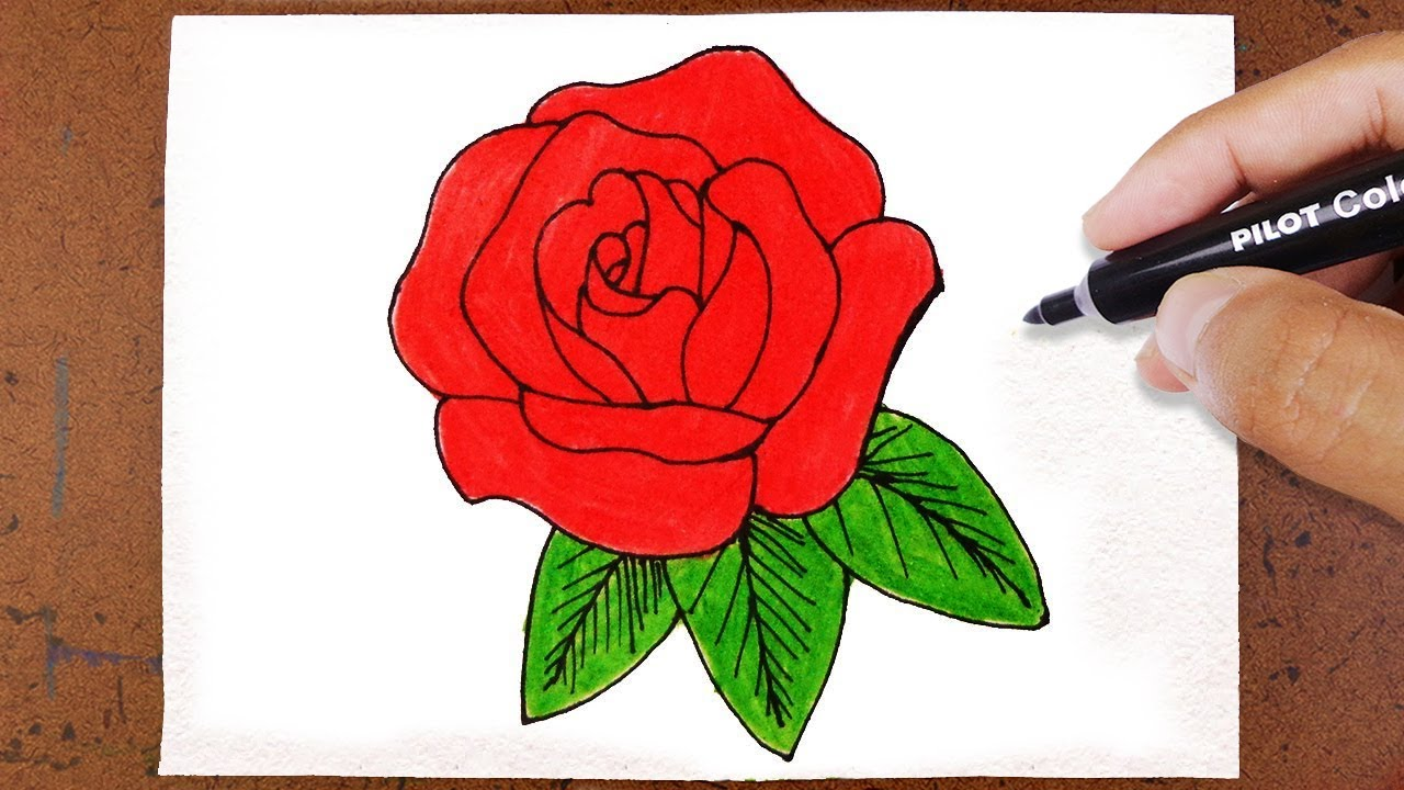 Como Desenhar E Pintar Uma Rosa Youtube