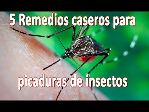 que medicamento es bueno para las picaduras de insectos