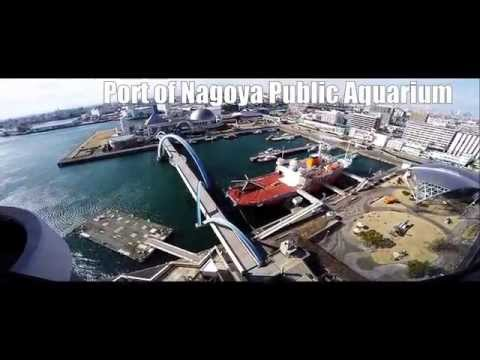 名古屋港水族館 Port of Nagoya Public Aquarium