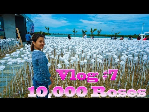 Trip to 10,000 roses, Lapu Lapu Shrine and lunch at Lantaw floating native Restaurant | Vlog #7