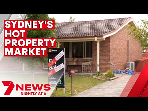 """Sydney property market downgraded from """"stupid"""" to """"just silly"""" 