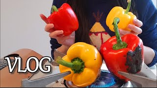 vlogㅣ절임음식, 구운 파프리카 오일절임, 토마토매실…