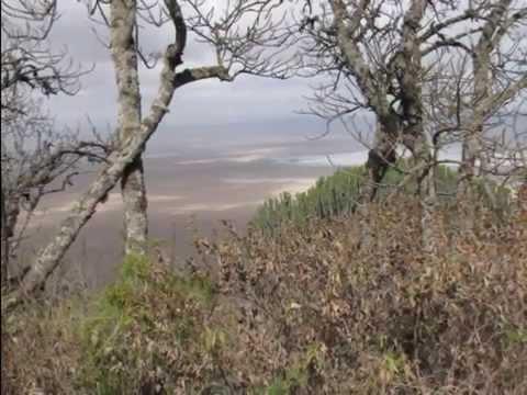 Rayappa Kasi   Ngorongoro National Park, Tanzania, Part I