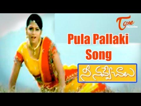 Nee Navve Chalu - Pula Pallaki Song