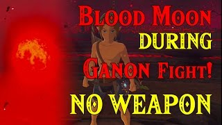 Blood Moon DURING Ganon Fight! NO WEAPON! ..?? Link in Four Links Adventures within Zelda BotW
