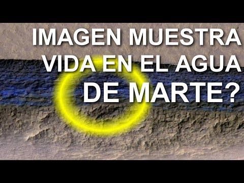 Imágenes que muestran vida en el agua de Marte