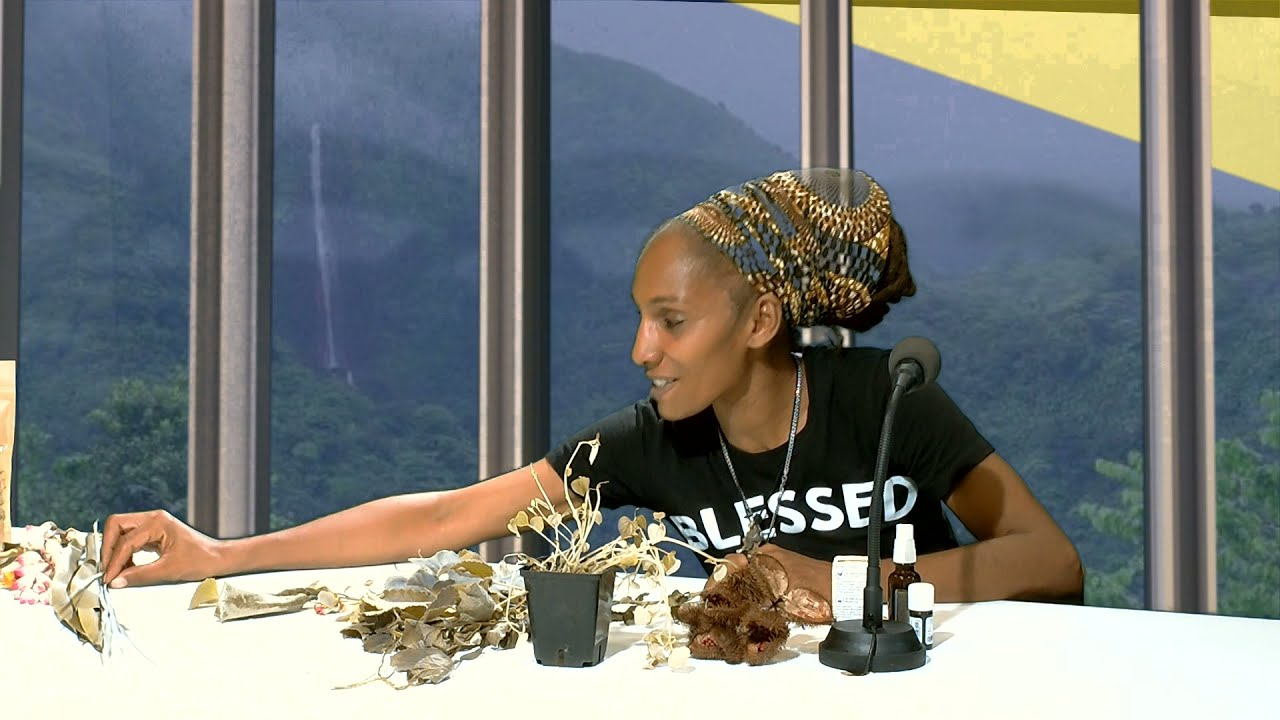 Ashaya Regent Gérante de Ital Bio Livity (partie 3)
