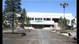 第38回全日本女子A(決勝) SEIBUプリンセスラビッツ vs 道路建設ペリグリン