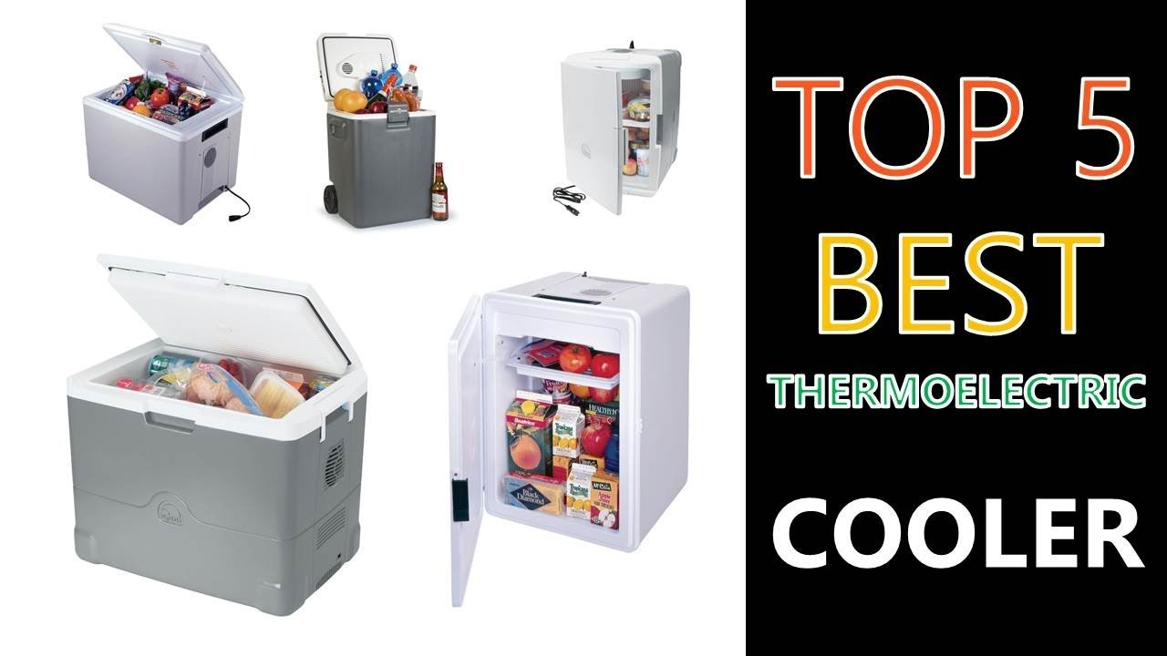 Best Thermoelectric Cooler 2018