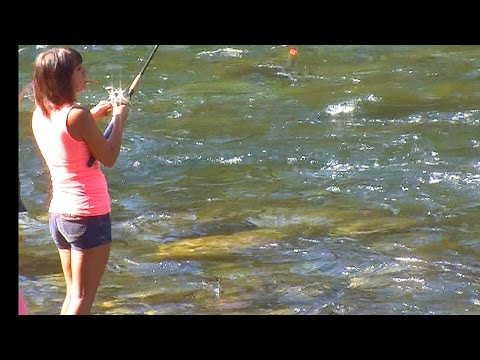 Vedder River REPOST Fishing Report Sept 21 2014 BC CANADA