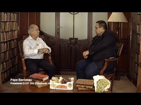 Café con... Pepe Bernabeu, Presidente DOP Uva Embolsada del Vinalopó