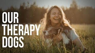 Our THERAPY DOGS for HUMAN TRAFFICKING survivors...