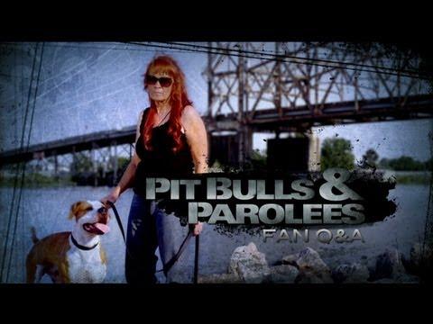 Tia on Personal Life and Expanding Villalobos   Pit Bulls and Parolees