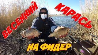 Ловля Крупного Карася на Фидер 2020 Фидерная Рыбалка в Черте Города