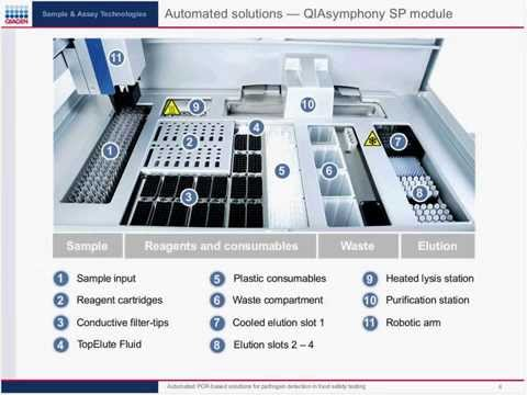 Automated PCR-based solutions for pathogen screening in food safety testing