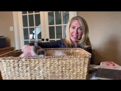 Matilda The Algonquin Cat Read By Author Leslie Martini