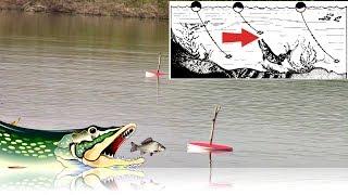 Как ловить щуку на жерлицы поставушки и кружки по открытой воде