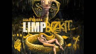 Limp Bizkit - Introbra