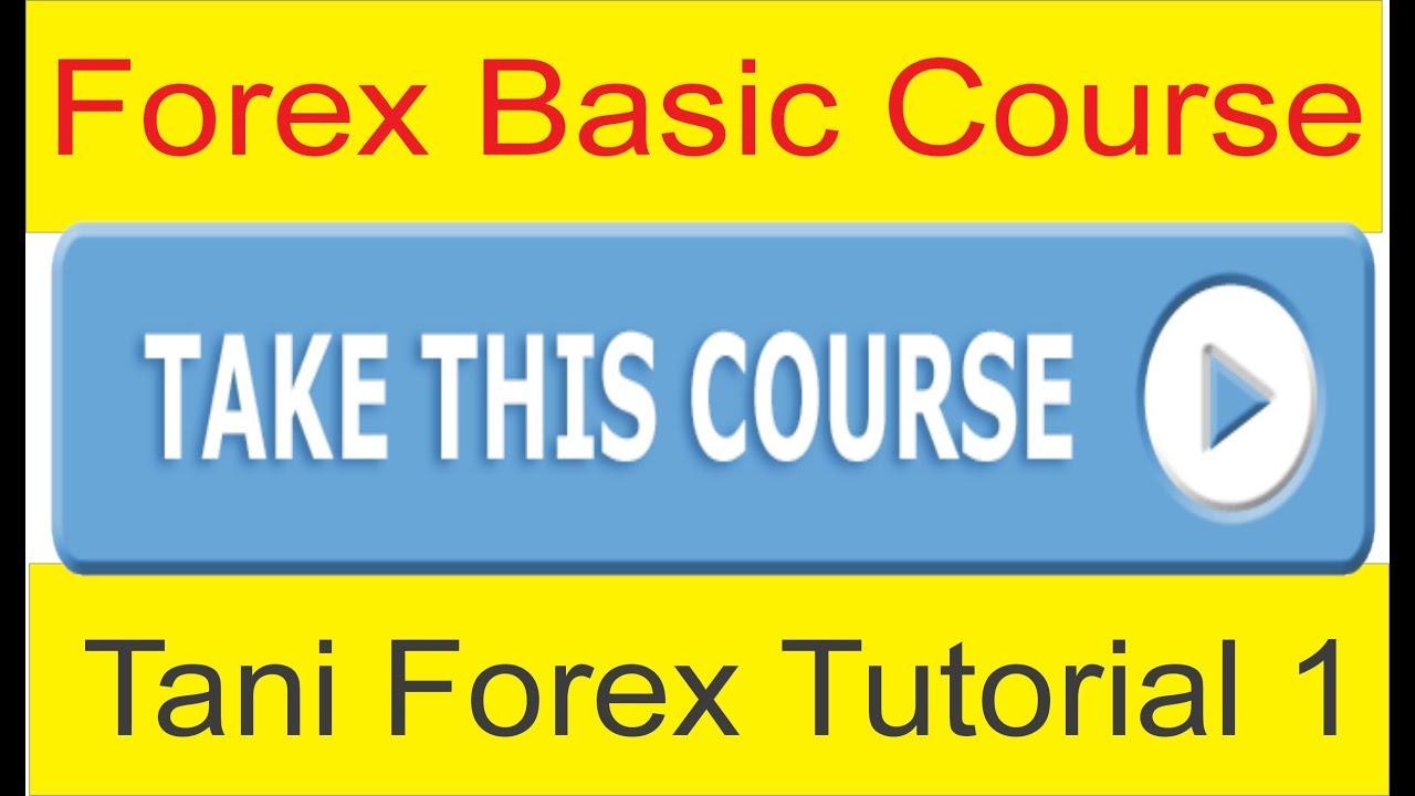 Forex trading tips for beginners in urdu