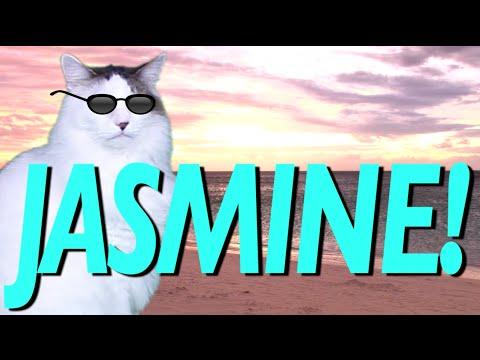 HAPPY BIRTHDAY JASMINE! - EPIC CAT Happy Birthday Song