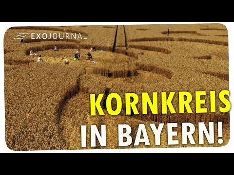 Kornkreis-Alarm in Bayern - mal wieder! |  ExoJournal
