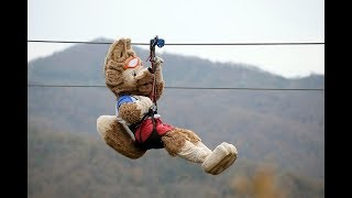 Not all about football: Official FIFA WC 2018 mascot Zabivaka rides a zipline in Sochi's Skypark