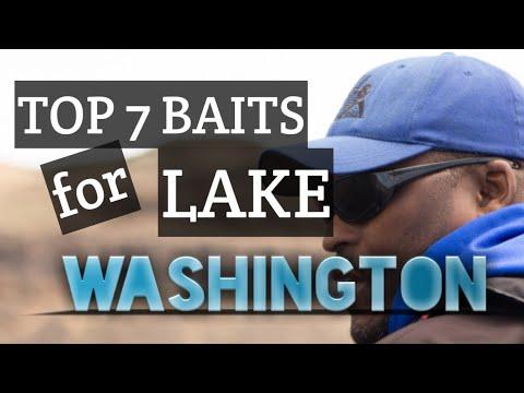 Top 7 Year Around  Baits For Smallmouth Bass On Lake Washington