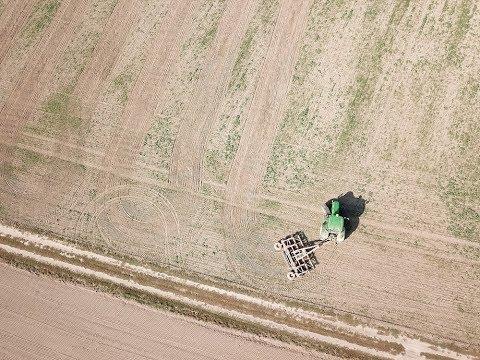 Niszczenie plantacji rzepaku. John Deere 6930/Carier CR420/AutoTrack z ATUDJI Mavic Pro