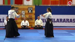 7th International Aikido Festival, France