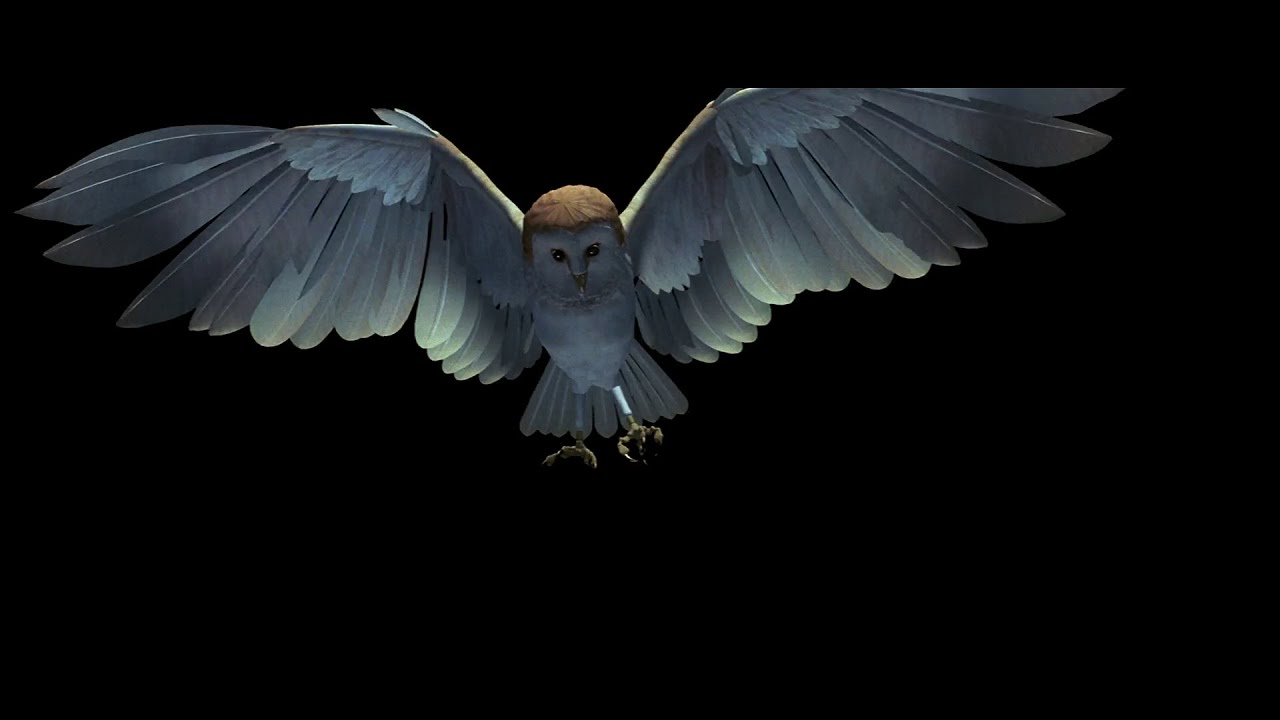 Labyrinth - CGI Owl Opening Credits (1986) - YouTube Labyrinth Movie Sarah