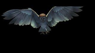 Labyrinth - CGI Owl Opening Credits (1986)