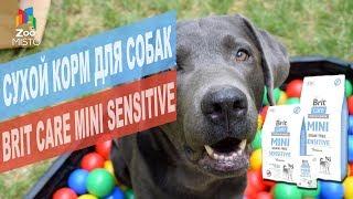 Brit Care Mini Sensitive сухой корм для собак   Обзор Brit Care Mini Sensitive сухой корм для собак