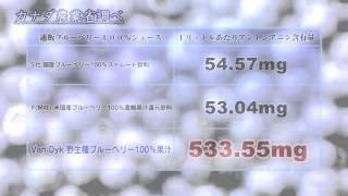 山本ゆきさん、今年も全日本優勝おめでとうございます!
