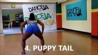 1 Dozen (12) FEMALE DANCEHALL STEPS (DHQ STYLE) Vybz Kartel -