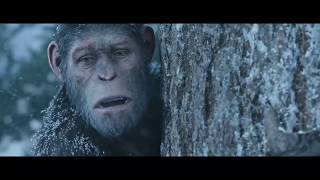 اقوى قتال القرد سيزر -HD
