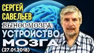 «ВЫНОС МОЗГА #29»: «Устройство мозга». 27.01.2018. Савельев С.В.
