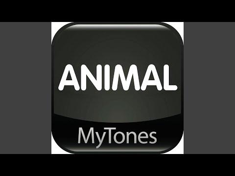 Animal - Ringtone