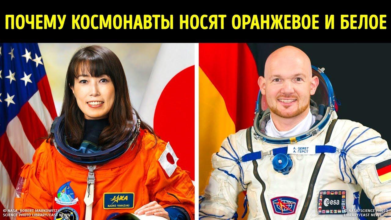 Почему космонавты носят оранжевое и белое
