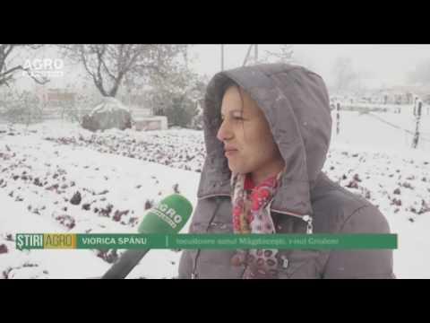 Zăpada a acoperit Moldova în luna aprilie
