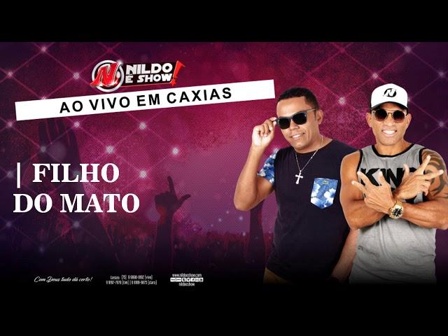 Nildo é Show - Filho do Mato (Ao vivo em Caxias)