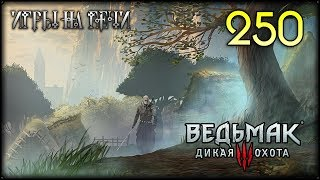 ВЕДЬМАК 3 - ПРОХОЖДЕНИЕ - 250