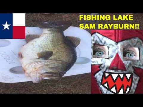Lake Sam Rayburn Fishing Guide Review🎣